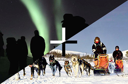 SPECIAL PACK: AURORA + DOGSLEDGE
